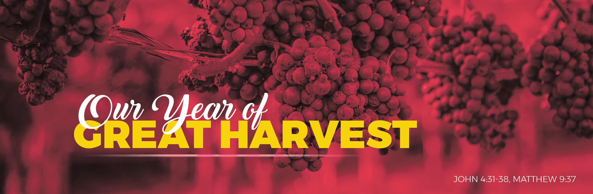 Year Great Harvest 2017